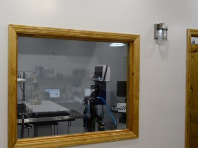 A window looking into one of the treatment rooms